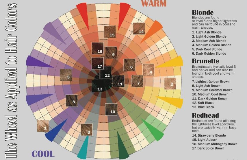 Color Wheel - By Clairol, SNS-CWHL