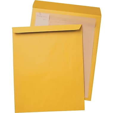 14 X 19 Envelope Mailers - 100/Box